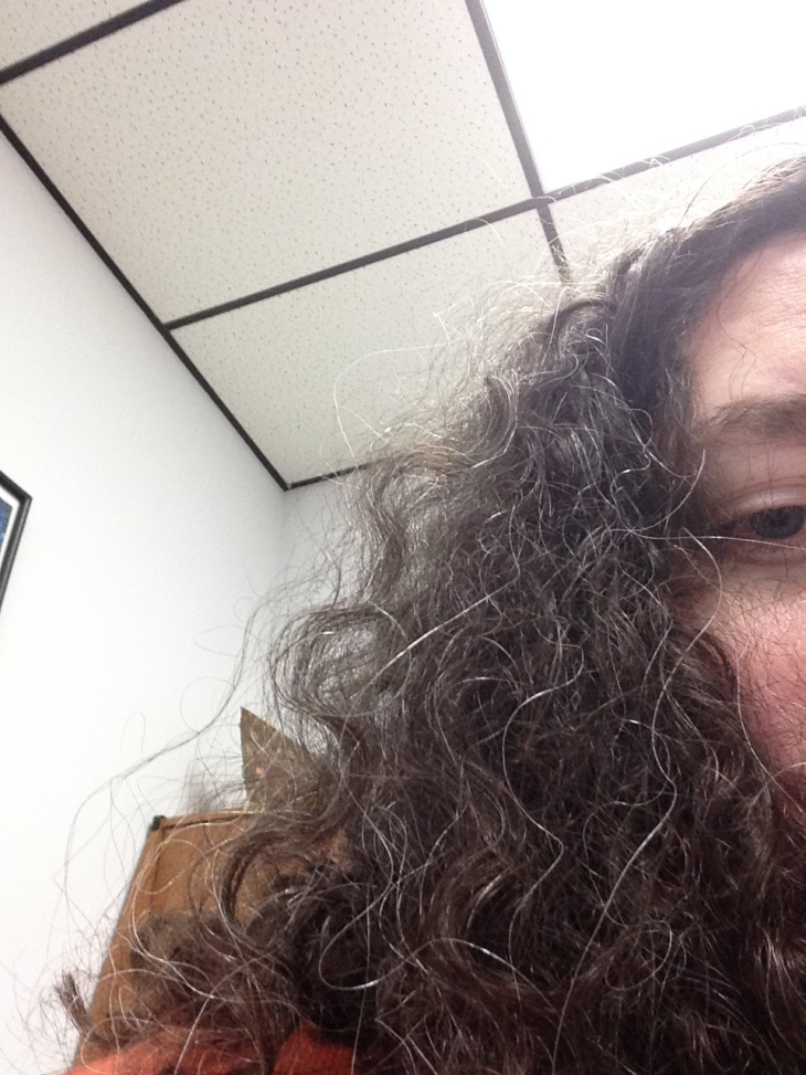 Everything else is strange and uncalled for in a bad way, but my curls today are strange and uncalled for in a wonderful way.  I'm wearing my hair down all day just to see what they might do next. Also, I disapprove of my gray hairs not being as curly as the rest of them, but wholly approve of them being silver.