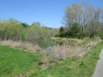 brannigan's creek 024