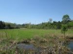 brannigan's creek 028