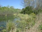 brannigan's creek 030