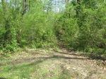 brannigan's creek 033