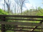 brannigan's creek 036
