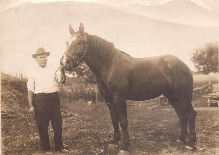 This is my great-grandpa, Harry Robinson, with his horse, because the impulse of people to pose with their awesome machines is older than the Trans-am.